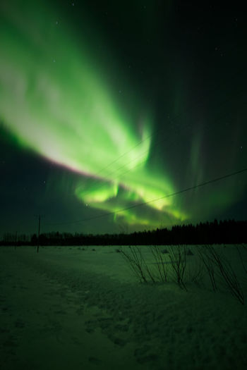 Awesome Northern Lights in the end of February Beauty In Nature Night Sky Green Color Star - Space Tranquility Astronomy Tranquil Scene Cold Temperature No People Landscape Nature Snow Aurora Polaris Outdoors Power In Nature Explore Winter Photography Scenics Freshness Northern Lights Travel Horizon Colors