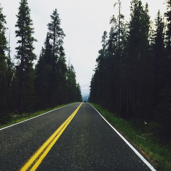 USAtrip Roadtrip Forest Mountains Horizon Dark Light Taken From Smartphone Camera EyeEmNewHere EyeEmNewHere