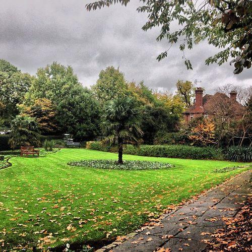 #park #green #london Green London Park