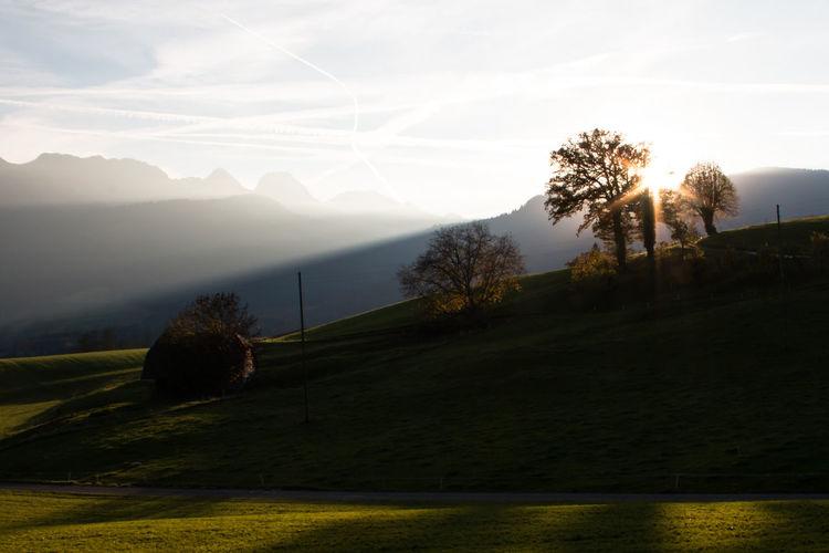 Last sunbeams Abendstimmung Cloud - Sky Landscape Landscape_Collection Light Majestic Sky Stockental Sun Sunbeams Sunset Tree