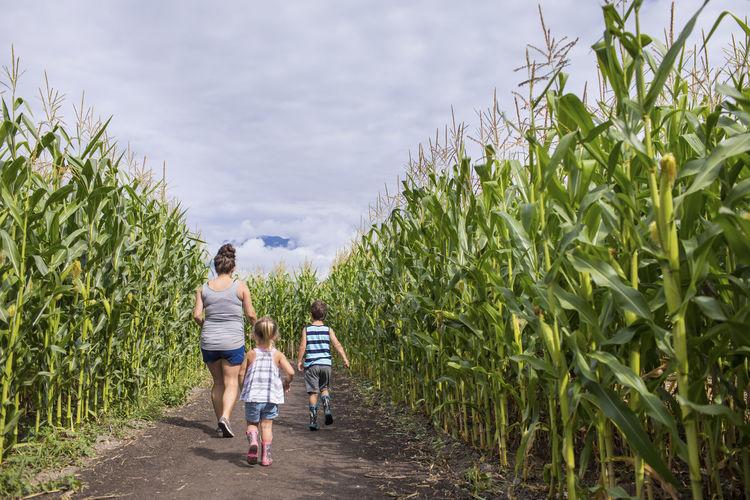 Rear view of people walking on farm