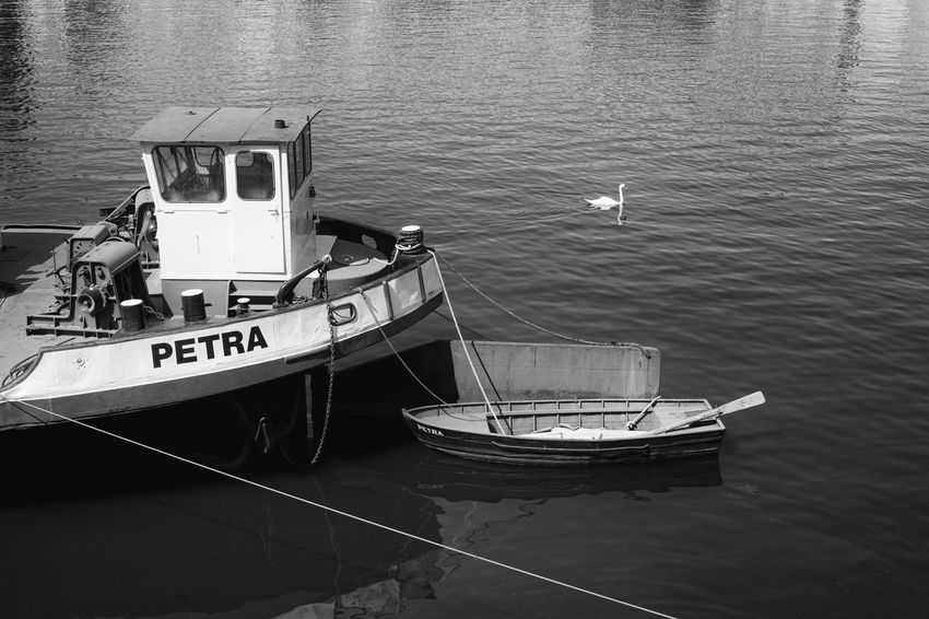 Three afloat Anchored Blackandwhite Day High Angle View Mode Of Transportation Moored Nature Nautical Vessel No People Outdoors Reflection Rope Rowboat Sea Text Three Tranquility Transportation Travel Water Waterfront