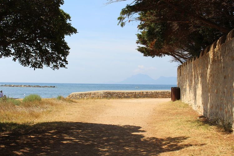 ile saint honorât, france Water Plant Sea Sky Tree Land Nature Beach Tranquility Sunlight Beauty In Nature No People Tranquil Scene Day Outdoors Scenics - Nature Shadow Architecture Direction