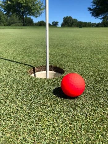 Sport Ball Green Color Grass Plant Golf Day Golf Course Red Leisure Activity Nature Golf Ball No People Green - Golf Course Sunlight