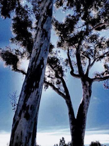 #landscape #nature #photography