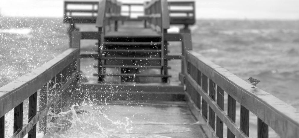 crashing wavs Black And White Black And White Photography Depth Of Field Dock EE_Daily: Black And White Eyeem Black And White Hurricane Narrow Pier Seascape Seascape Photography Storm Surf Tropical Storm Waves Crashing