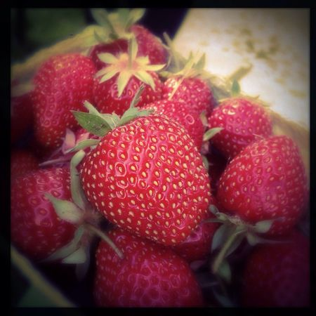 EyeEm Best Edits Yum Red Fruit
