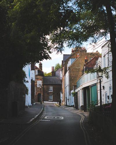 EyeEm LOST IN London Hampstead Heath