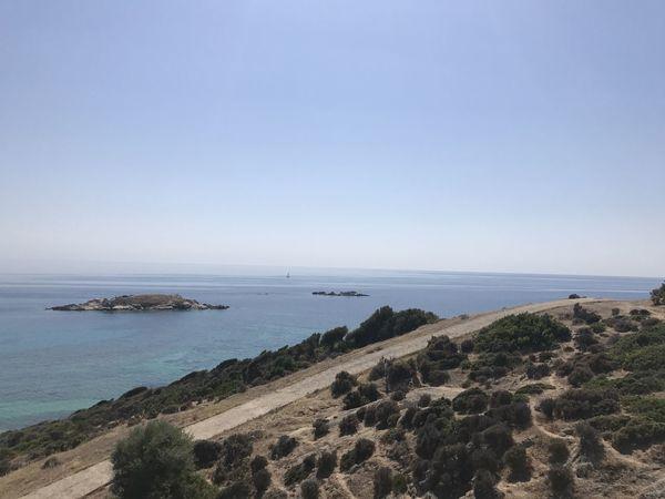 Beautiful wild Meditearranean beaches, Greece Mediterranean  Natute_collection Summertime ♥ Wildlife & Nature Beach Blue Greece Hiking Adventures Landscape Sea Sithonia Travel Destinations