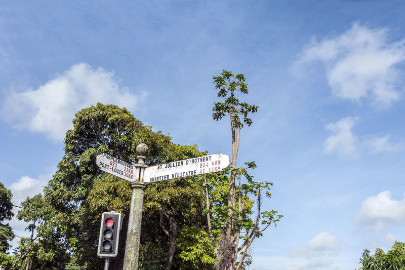 Red light Exotic EyeEm Best Shots Green Color Traffic Tranquility Tree Architecture Cloud - Sky Communication Day Direction Growth Low Angle View Mauritius Nature No People Outdoors Red Color Sky Text Traffic Lights Travel Destinations Tree