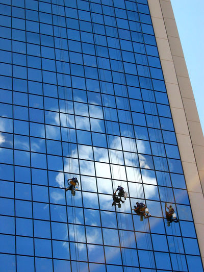 Architecture Blue Building Building Exterior Built Structure City Clean Cleaning Day Effort Glass Glass - Material Low Angle View Modern Occupation Office Building Exterior Outdoors Reflection Rope Sky Skyscraper Washing Window Window Washer Working