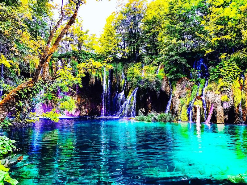 The greenest blue - Plitvice Lakes, Croatia Croatia Sightseeing Water Beauty In Nature Tree Nature Scenics Tranquil Scene An Eye For Travel Waterfront Tranquility Reflection Outdoors Day Waterfall Growth Forest EyeEmNewHere
