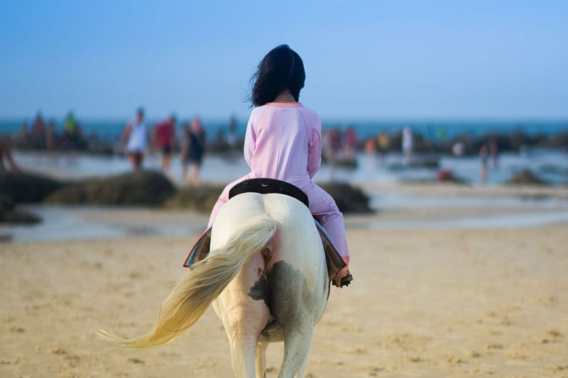 Rear view of girl riding horse on beach