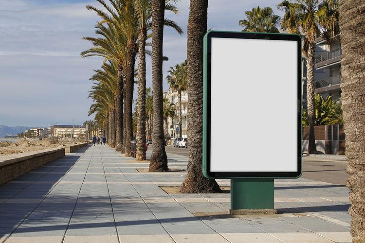 Empty billboard on footpath against trees