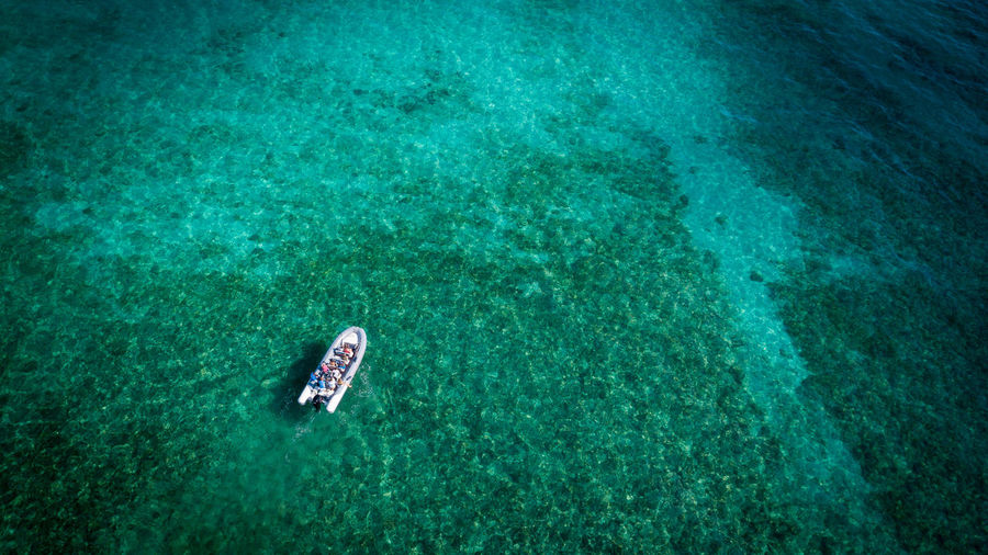 Water Sea Underwater High Angle View Nature UnderSea Swimming Trip Holiday People Vacations Day Outdoors Leisure Activity Lifestyles Scenics - Nature Beauty In Nature Turquoise Colored Floating On Water