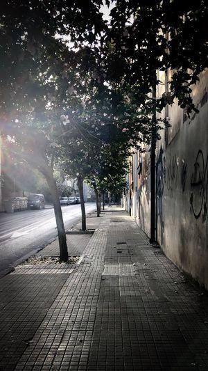 Morningwalk in