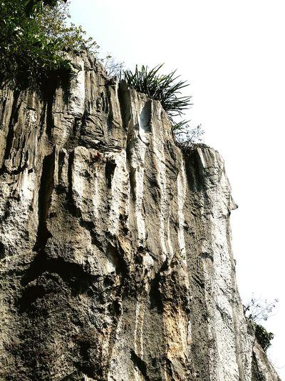 Peace And Love Taking Photos Stone Wall Hikingadventures Caves Greenery Goodgoodday
