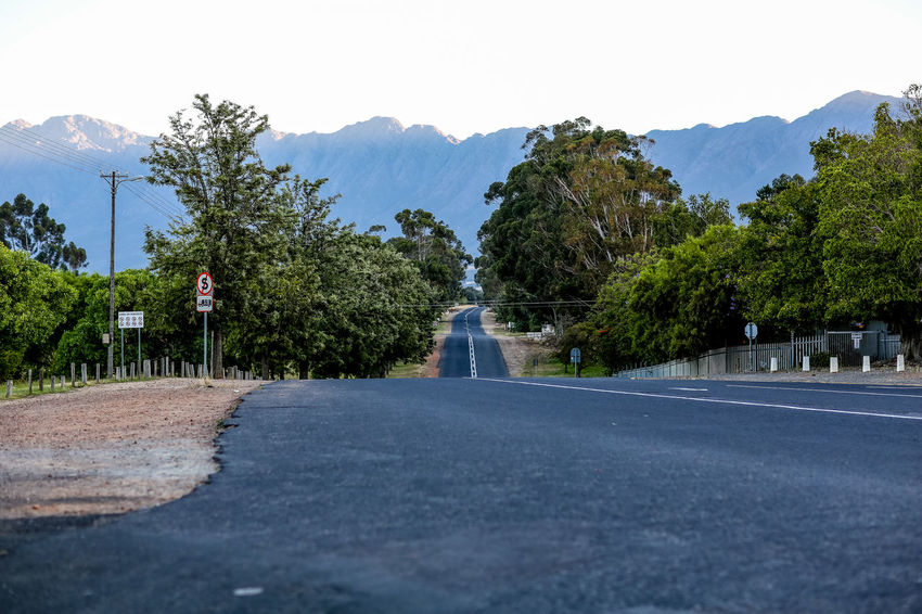   high res image available Cape Province Diminishing Perspective Early Morning Empty Road Landscape Mountain Mountain Range No People Outdoors Remote Road South Africa The Way Forward Tranquil Scene Tree Tulbagh Winelands