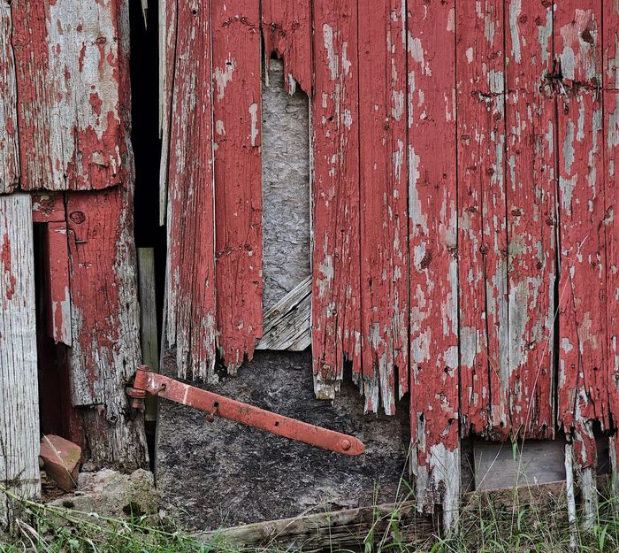 Unhinged. The red paint and iron hinge were willing, but the wood just couldn't hold up on the dilapidated door of an old barn on a farm in Ellington, Connecticut. Door Wood - Material Old Building Exterior Damaged Built Structure Deterioration Architecture Weathered Ruined Wooden Run-down Barn Farm EyeEm Abandoned Old Buildings Outdoors Connecticut New England  No People Weathered Architecture Summer