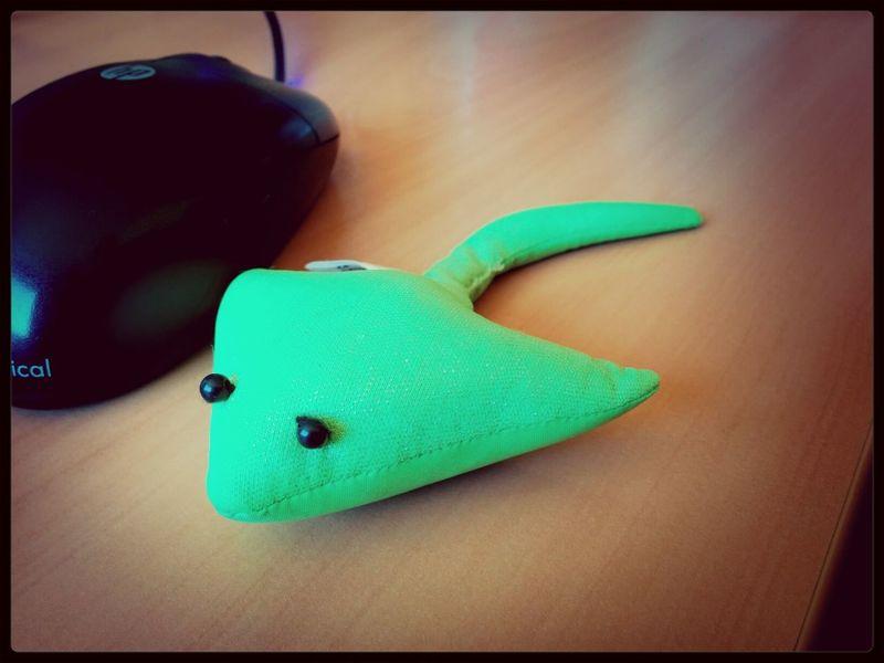 Rochen Devilfish