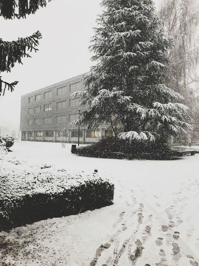 Snowing at