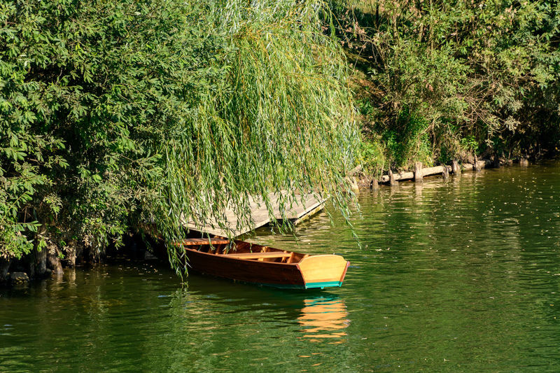 Boat in lake against trees
