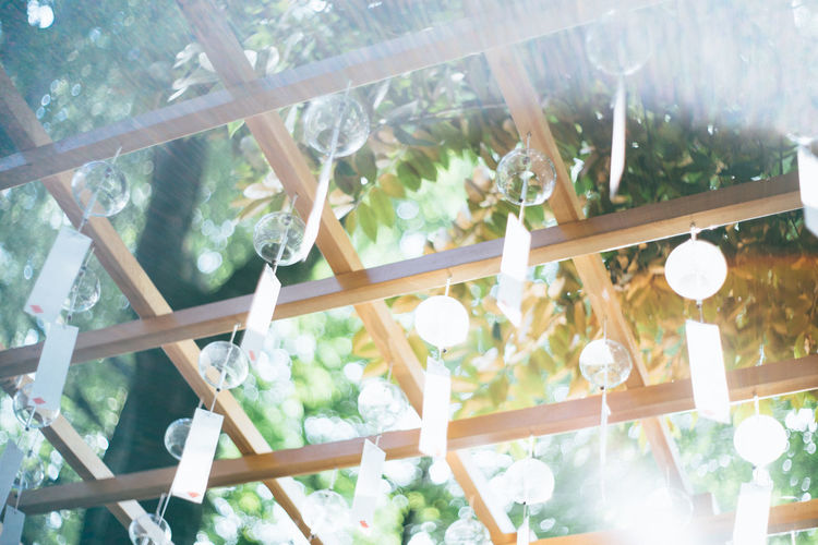 Sunlight Sunshine Wind Chain Wind Summer Breeze Japan Summer Summer In Japan Festive Season How To Get Cool In Japan Style Wodden Frame Wind Charms 風鈴 風鈴祭り Close-up Beauty In Nature Low Angle View Indoors  Nature No People Day Sunlight Hanging Tree