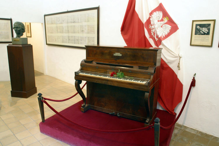 Arts Culture And Entertainment Day Indoors  Music Musical Instrument No People Piano Piano Red Shopin Technology