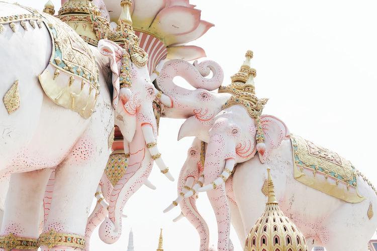 Bangkok Elephant Elephants Gold Pastel Pastel Power Pink Pink Color Statue Thailand