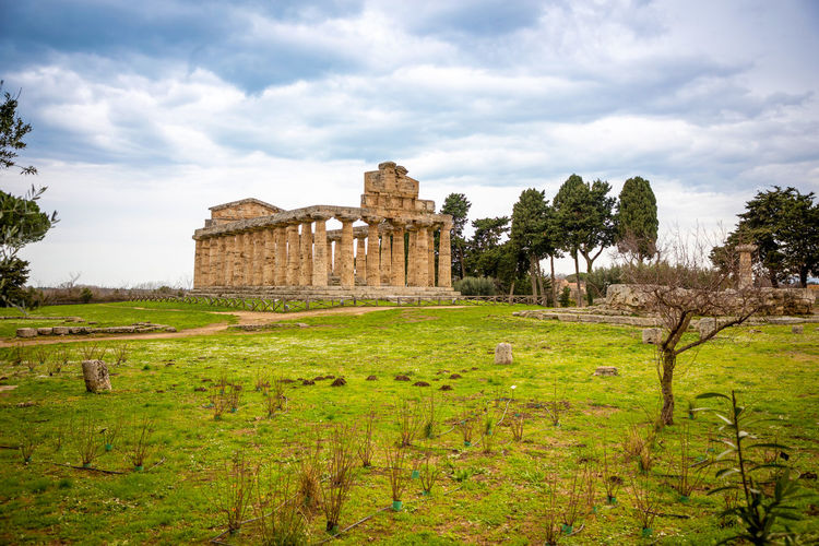 Italy Paestum History The Past Plant Architecture Sky Ancient Tree Cloud - Sky Built Structure Old Ruin Building Exterior Travel Destinations Nature Grass Green Color Old Day Ancient Civilization Travel Tourism No People Archaeology Ruined Outdoors