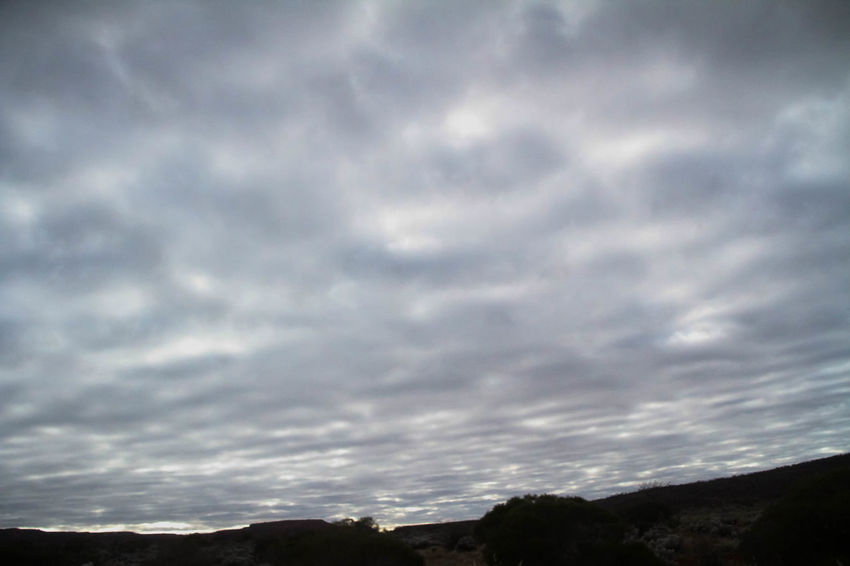 Nullarbor Plain Nullarbor Nullarbor Plain Cloud - Sky Sky Beauty In Nature Scenics - Nature Tranquil Scene Tranquility No People Nature Outdoors Day Overcast Environment Non-urban Scene Landscape