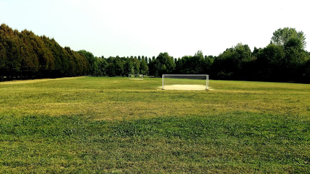 grass, tree, nature, green color, tranquility, growth, field, clear sky, beauty in nature, landscape, no people, day, outdoors, scenics, sport, golf, sky, golf course, green - golf course, soccer field