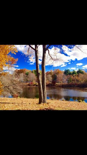 Lake Lake View Tree And Sky Mountain View Nature Photography Beautiful Day