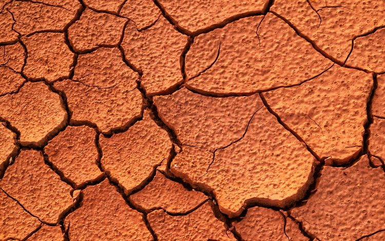natural pattern cracked ground Pattern Cracked Full Frame Backgrounds Drought Nature Pattern Extreme Terrain Textured  Arid Climate Barren Desert Brown Clay Day No People Landscape Dividing Outdoors Close-up Beauty In Nature