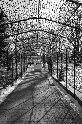 Empty footpath in park during winter
