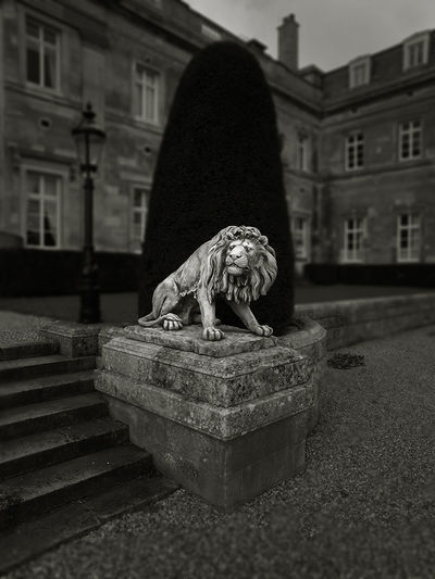 Luton Hoo, Bedfordshire, UK, 2008. Luton Hoo Hotel Gardens Luton Hoo Country House Britain England Hotel Blackandwhite Travel Photography Travel Lion Statue Landscape Statue Architecture Building Exterior Built Structure