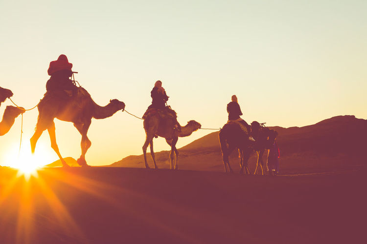 Group of people riding horse on desert against sky