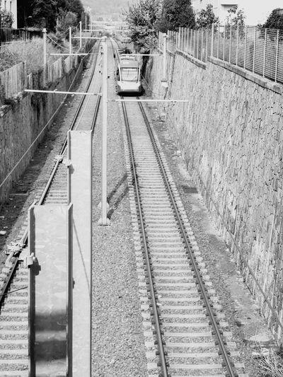 Italy Urban Community Black & White Railroad Track Rail Transportation Railroad Station Platform Public Transportation Sky Train Track Railway Track Locomotive Straight Steam Train Long Train Station Train - Vehicle Track
