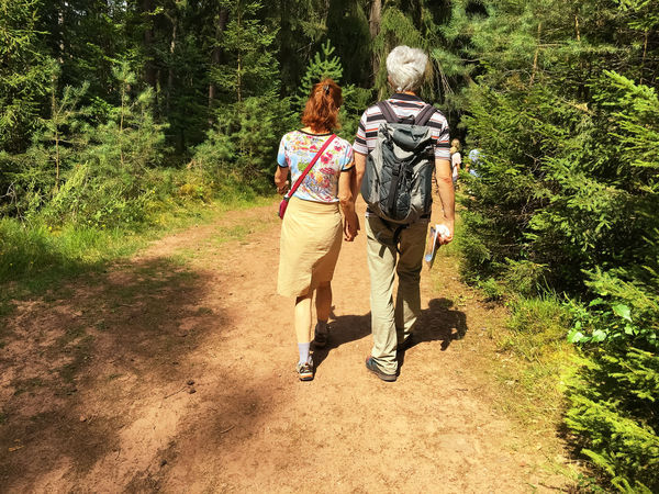 nature hike in the forest Casual Clothing Dahn Forest Forest Path Hike Hiking Hiking_walking Leisure Activity Nature Nature Hike Outdoors People Rear View The Way Forward Together Togetherness Walk Walking Walking Around Walking Tour Walkingtour Wander Wood Wood Land WoodLand