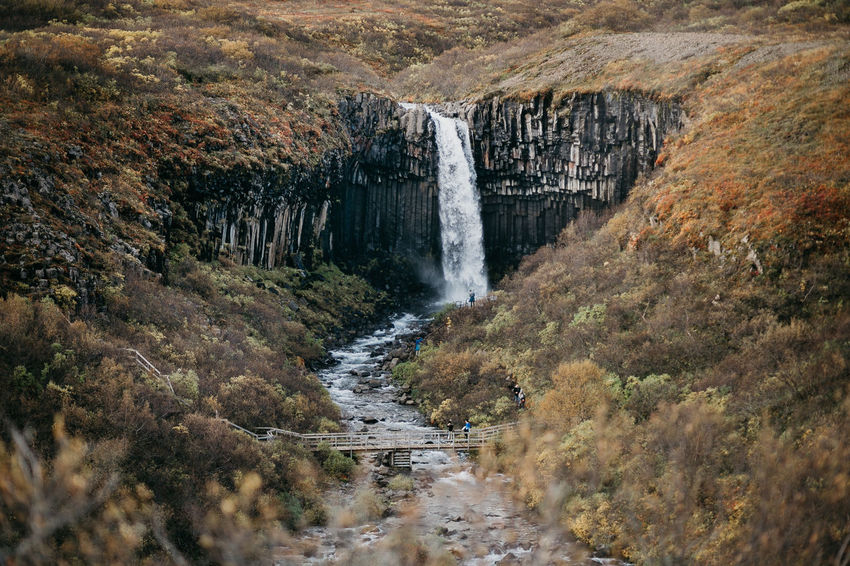 Iceland Adventure Beauty In Nature Canon Cliff Landscape Motion Nature Outdoors River Roadtrip Rock - Object Scenics Svartifoss Travel Destinations Water Waterfall Perspectives On Nature