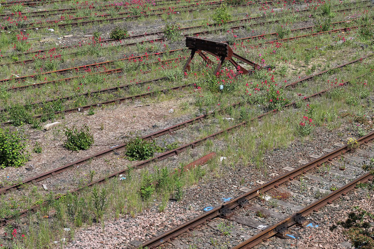End of the lines. Overgrown Train Tracks Abandoned Connection Day Grass Green Color High Angle View Land Metal Nature No People Old Outdoors Plant Rail Buffer Rail Transportation Railroad Track Rusty Track Transportation