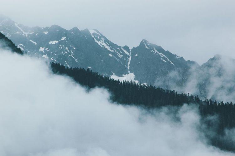 Mountain Forest Landscape Cold Temperature Sky Fog