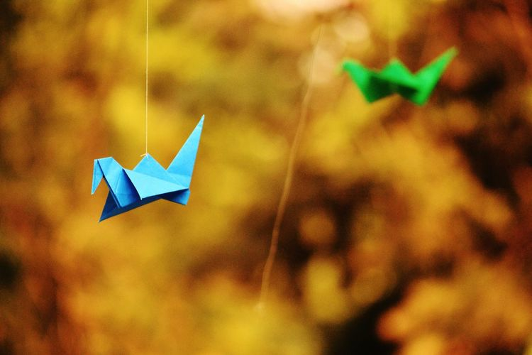 Close-up of origami birds hanging in yard