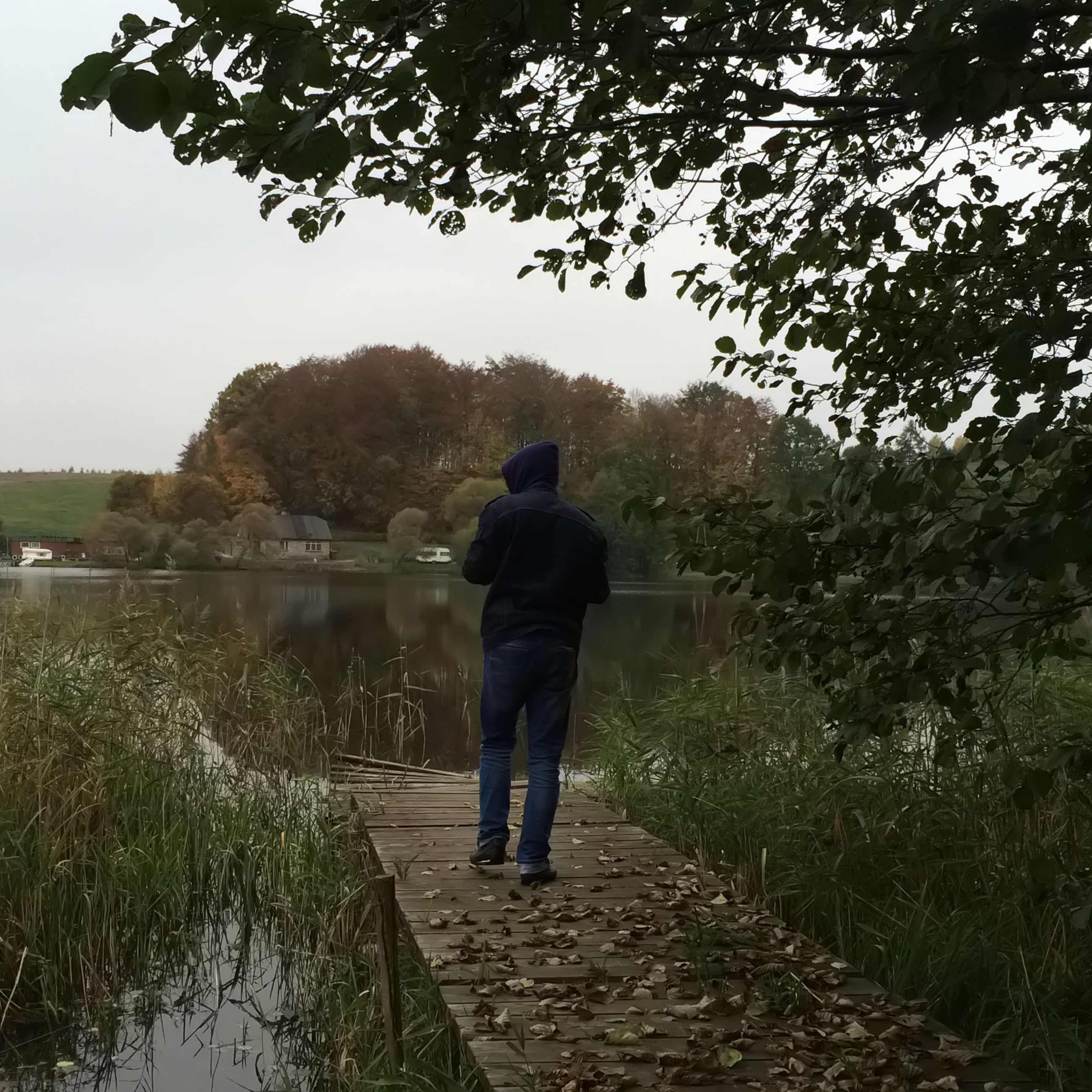 rear view, full length, tree, water, lifestyles, leisure activity, men, tranquility, standing, tranquil scene, casual clothing, lake, walking, nature, person, beauty in nature, sky, scenics