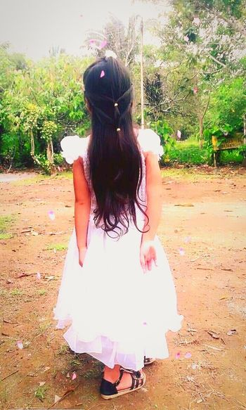 Piinky Tree Full Length Standing Long Hair Rear View Young Women Sky First Eyeem Photo