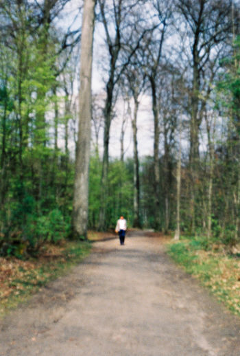 Rear view of man walking on footpath in forest