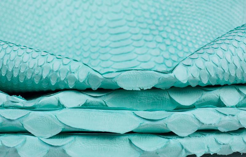 Full frame shot of blue water, python skin background
