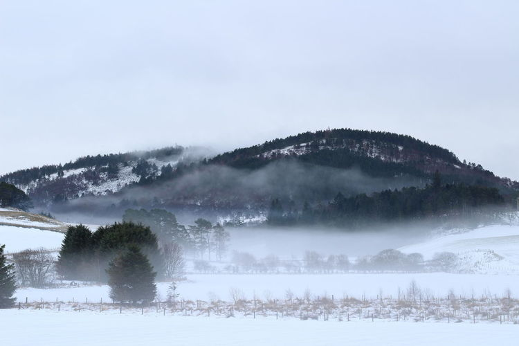 Cloud - Sky Cold Temperature Day Forest Freezing Fog Glenbuchat Highlands Landscape Misty Mountains  Mountain Nature No People Outdoors Scenics Scotland Sky Snow Strathdon Tree Winter