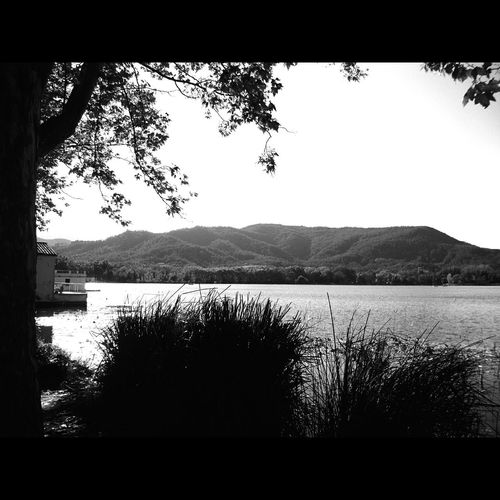 Estany de Banyoles Catalunyaexperience Beauty In Nature Eye4black&white  Diumenge Eye4black&white  Eyeemphotography EyeEm Best Shots - Black + White People Photography Fortheloveofblackandwhite Catalunya Barcelona Catalunya Lliure Blancoynegrofoto Barcelona Catalunyagrafias Catalunya Luz E Sombra Somosfelices Black And White Photography Blancoynegro Blackandwhite Photography Illuminated Nature Outdoors Beauty In Nature Water Scenics