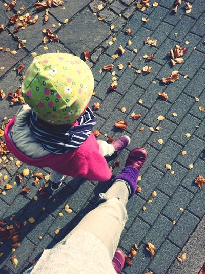High angle view of child on footpath during autumn